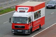 HF11DYX - White & Co (TT TRUCK PHOTOS) Tags: white lake man co killington m6 removals