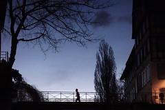 Petite France - Rflexion Couleur (Cheeky_Aurore) Tags: blue orange black france color reflection water night plante eau outdoor sony bleu strasbourg reflet ciel reflect extrieur nuit arbre petitefrance couleur petite calme rx heurebleue rx100 dscrx100