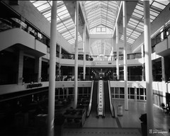 pinhole4x5_2016-04-25-0004+ (Jari Savijrvi) Tags: pinhole shoppingmall seinjoki rakennus kauppakeskus glasssteel torikeskus diy4x5pinhole linesandwindows