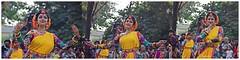Basanta Utsav 2016#8 (Anindya Roy Photography (catching up)) Tags: india art festival lady canon dance mood emotion culture celebration holi kolkata dolyatra basantautsav