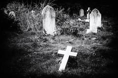 Graves (MacBeales) Tags: white black cemetery grass stone canon silver eos 350d cross graves plugin nik southampton efex