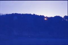 (bensn) Tags: trees light sun film grass japan zeiss kodak slide contax carl g2 f2 e100vs 45mm