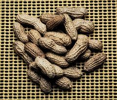 peanuts (Mark J. Stein) Tags: food peanuts studiophotography photobymarkjstein photobymarkstein