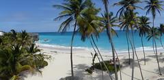 Bottom Bay Panorama (vbvacruiser) Tags: cruise vacation panorama beach palms barbados caribbean silversea silverwind bottombay