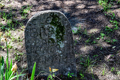 DSC_0298.jpg (SouthernPhotos@outlook.com) Tags: cemetery us unitedstates alabama sumtercounty larrybell epes browncemetery larebel larebell