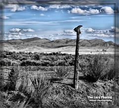 April 9 2016 - Grass Creek boot and barbed wire (lazy_photog) Tags: sky beautiful field grass clouds creek fence photography boots lazy oil badlands wyoming posts elliott photog worland 040916meeteetsegrasscreekdrive