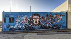 Lauren YS Collingwood (6D_1497-9) (ajhaysom) Tags: streetart graffiti collingwood australia melbourne canon1635l canoneos6d laurenys