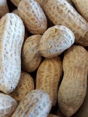 20160501 (Plonq) Tags: food peanuts 2016yip