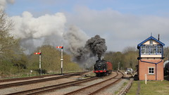 Smokin' (Duck 1966) Tags: train goods steam signals locomotive swithland gcr jinty timelineevents