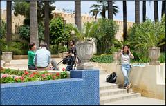 The Talk (mhobl) Tags: television garden tv maroc interview marokko fes jardinjnanesbil