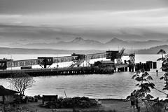 Coming Or Going??? (Reed 1949) Tags: nikon ferrylanding edmondswashington tamron18270mm nikond5200