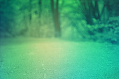 blur-dreamy-texture-texturepalace-49 (texturepalace) Tags: blur color leaves cc creativecommons dreamtextures texturepalace blurtextures
