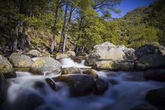 (The Kerbal Way) Tags: naturaleza nature rio del river jerte garganta infierno d3100