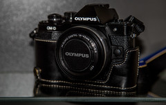 OMD E-M10 and leather half case. (CWhatPhotos) Tags: pictures camera leather digital that lens four photo foto image photos picture olympus images case system equipment have cameras fotos half which own contain 43 omd thirds mkii em10 esystem cwhatphotos