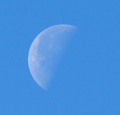 Waning Crescent 30 April 2016 (Sculptor Lil) Tags: moon london astrophotography handheld waningcrescent daylightmoon canon700d dslrsingleexposure