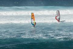 Maui February 2016-43 (Photobug915) Tags: hawaii maui windsurfers beachscene hookipabeach