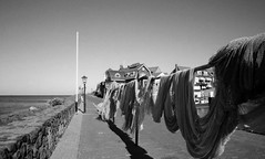 . (Out to Lunch) Tags: blackandwhite lake film monochrome zeiss 35mm fishing harbour analogue zeissikon nets ijssel drying urk 1550 zi sonnar