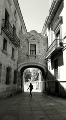 Madrid en blanco y negro (Eliazar Torre) Tags: madrid blackandwhite bw espaa blancoynegro contraluz spain ciudad paseo silueta callejeando arco callejeandoenmadrid