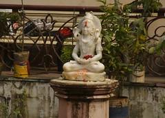 Shiva_pond_621 (Manohar_Auroville) Tags: india west temple kali mother victoria therese teresa kolkata luigi bengal fedele manohar