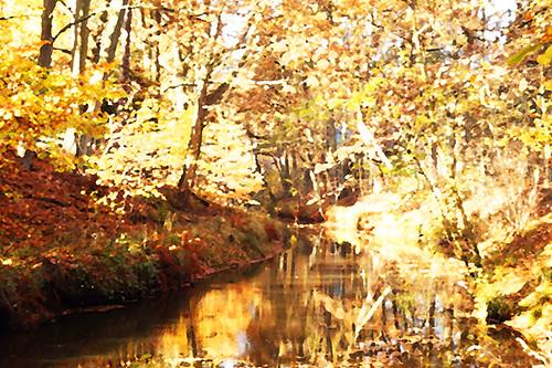 Herbst Wunderland