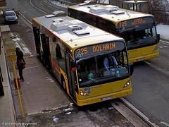 SRWT 5537-725 (Public Transport) Tags: bus buses belgique publictransport transportencommun autobus luik vanhool busen wallonie provincedelige