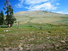 P1000602 (1).jpg (Upstate Dave) Tags: fitzpatrickwilderness majorplaces shoshonenationalforest windriverrange yellowstone 2013