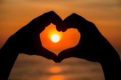 SUN - SOL (adrianoqueirozdias) Tags: sunset sun silhouette silhueta lovesunset lovephotography sunsetphotographs horadourada apreciadoresdanatureza