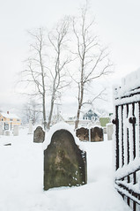 Cemetery Snowstorm (Grant is a Grant) Tags: ca winter snow canada novascotia ns snowstorm january kitlens wolfville 1855 wintertime nikkor1855mm nikond90 vsco vscofilm
