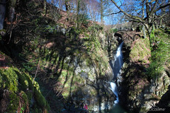 Aira Force Landscape (Ashey1209) Tags: water force lakes lakedistrict cumbria nationaltrust airaforce aira