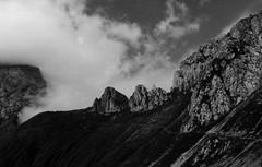 (thefrizz83) Tags: bw mountain alps sentiero alpi montagna bianconero pathway friuli friul allmountain