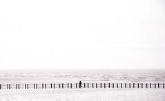Weston-Super-Mare (Simon Maisie Photography) Tags: westonsupermare southwest england unitedkingdom art photography digital d7200 sclarephoto simoncphotography simonclare nikon bw monochrome mono monochromatic landscape sea seascape person walk simple mimalist blackandwhite photographs for sale wwwsimonmaisiephotographycoukprints