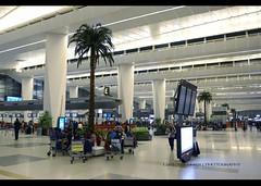Terminal 3 | New Delhi | DEL | VIDP