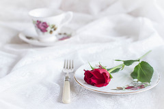 77/366: Tea rose (judi may) Tags: red stilllife cup rose 50mm dof lace redrose plate fork depthoffield teacup cupandsaucer tabletopphotography canon7d day77366 366the2016edition 3662016 17mar16
