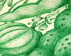 (Elsita (Elsa Mora)) Tags: green art nature illustration pen design natural handmade drawing foliage ballpointpen elsita elsamora greenballpointpen