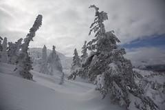 Winter Wonderland 2 (jukerr) Tags: canada britishcolumbia bigwhite bigwhiteskiresort