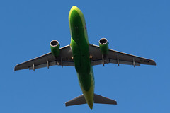 S7 Airlines A319 (denlazarev) Tags: sunset sky clouds plane canon airplane evening fly photo spring airport russia aircraft aviation air airline airbus airlines takeoff spotting airliner rostovondon lightroom s7  a319 oneworld   urrr  vqbqw