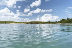 11.47, Vieques (Ti.mo) Tags: sea beach iso100 puertorico pr february vieques 25mm 2016 f20 0ev ••• ¹⁄₂₅₀₀secatf20 e25mmf2 plataprietabeachroad