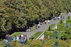 Sans Souci: Ramps (AntyDiluvian) Tags: trip berlin germany garden deutschland vineyard vines ramp terrace palace sanssouci potsdam terraced 2015