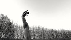 body part (szllva) Tags: blackwhite arm bodypart skulpture lukvansoom
