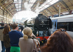Lining Up the Shot (McTumshie) Tags: england london train unitedkingdom railway steam tornado steamtrain steamlocomotive londonvictoriastation 60163 118c belmondbritishpullman 12march2016