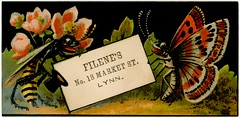 Filene's Department Store, Lynn, Massachusetts (Alan Mays) Tags: old flowers red plants signs black green animals yellow vintage ads paper advertising ma cards typography funny humorous antique massachusetts humor 19thcentury victorian butterflies illustrations insects ephemera lynn type marketstreet mass stores wasps advertisements fonts printed anthropomorphism typefaces departmentstores anthropomorphic nineteenthcentury filenes yellowjackets filene tradecards filenesdepartmentstore williamfilene