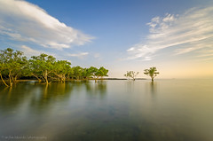Lucena, Quezon (boyabnoy) Tags: sunset sea seascape clouds landscape nikon long exposure philippines mangrove hoya lucena benro