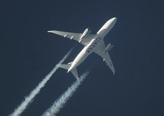 1703_1655_QR32_A7-BCL (emilz88) Tags: boeing hamad edi qr doh qatar 787 qtr dreamliner b788