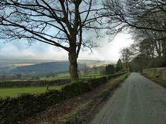 Derbyshire Level (Blue Pelican) Tags: road trees lumix derbyshire hills glossop tz10