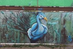 EDR (BE'N 59) Tags: en streetart blanco sanmigueldeallende mexique muros