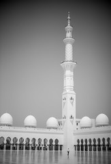 Mosque 7 (monochromia - jeremy chivers) Tags: march naturallight mosque abudhabi 2016 sheikhzayedmosque