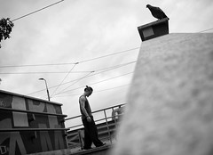 Sandro Duca 003 (Ricomincio da 50mm) Tags: milano bn bianco nero wks biancoenero isola 2016 gf2