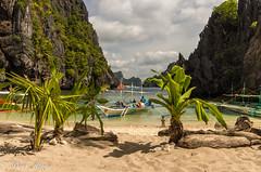 20150223-IMGP5104.jpg (derkderkall) Tags: ocean beach palms boat paradise cove philippines tropical whitesand karst elnido islandhopping palawan outrigger