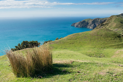 Cable Bay