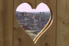 Home (Tracy Christina) Tags: wood city canada newfoundland heart stjohns april